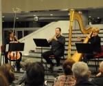 Milana Zarić, harfa, Borislav Čičovački, oboa i  Ivana Grahovac, violončelo