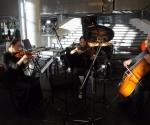 Aleksandra Milanović,violina Maja Milanović,viola  Srdjan Sretenović,violončelo