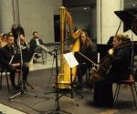 Vladimir Gagić, klarinet Gorana Ćurgus, harfa Julijana  Marković, violončelo